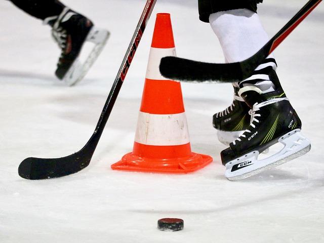 hokejisti u puku