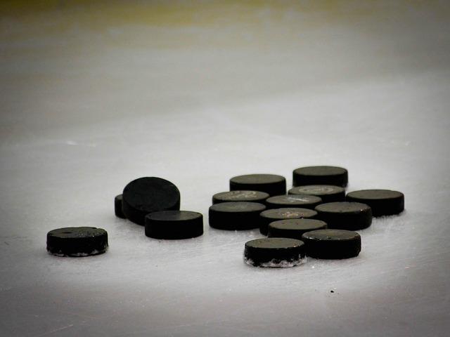 puky na ledě